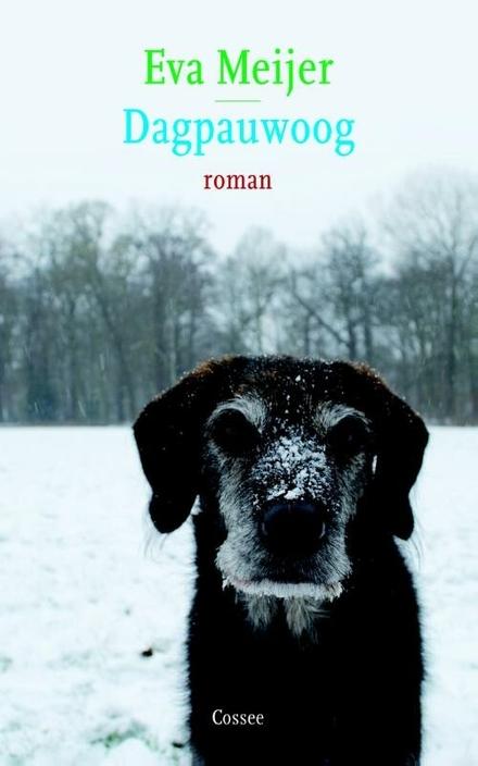 Dagpauwoog : roman