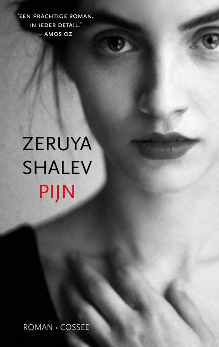Pijn : roman