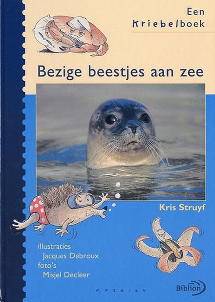 Bezige beestjes aan zee