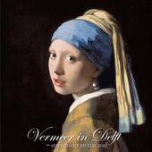 Vermeer in Delft : een schilder en zijn stad