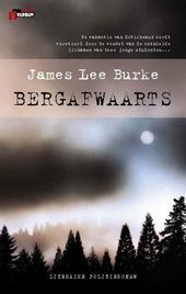 Bergafwaarts : literaire politieroman
