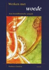 Werken met woede : een boeddhistische aanpak