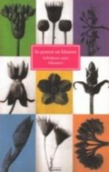 In geuren en kleuren : schrijvers over bloemen