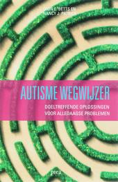Autisme wegwijzer : doeltreffende oplossingen voor alledaagse problemen