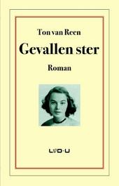Gevallen ster : roman