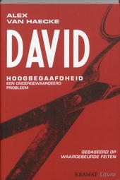 David : hoogbegaafdheid, een ondergewaardeerd probleem