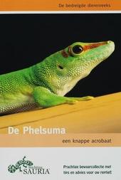 De Phelsuma : een knappe acrobaat