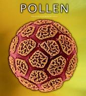 Pollen : de verborgen seksualiteit van planten