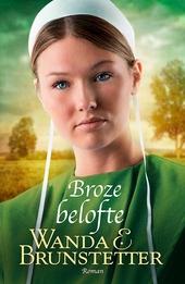 Broze belofte : roman