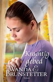 Krachtig gebed : roman