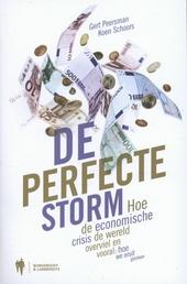 De perfecte storm : hoe de economische crisis de wereld overviel en vooral: hoe we eruit geraken