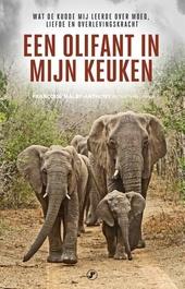 Een olifant in mijn keuken : wat de kudde mij leerde over moed, liefde en overlevingskracht
