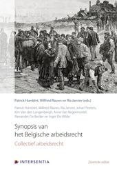 Synopsis van het Belgische arbeidsrecht : collectief arbeidsrecht