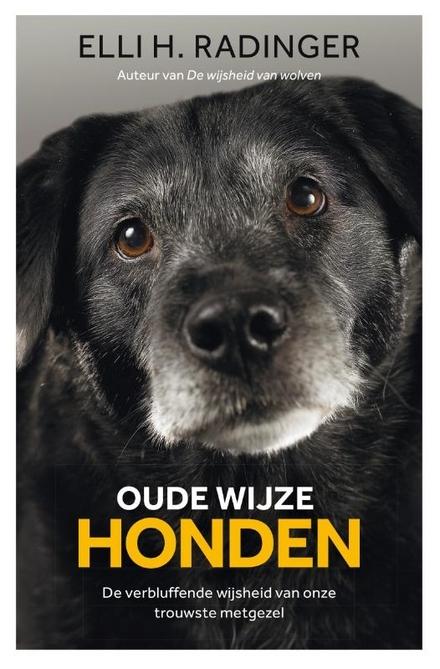 Oude wijze honden : de verbluffende wijsheid van onze trouwste metgezel