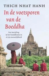 In de voetsporen van de Boeddha : een inwijding in het boeddhisme in al zijn menselijkheid