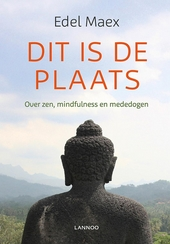 Dit is de plaats : over zen, mindfulness en mededogen