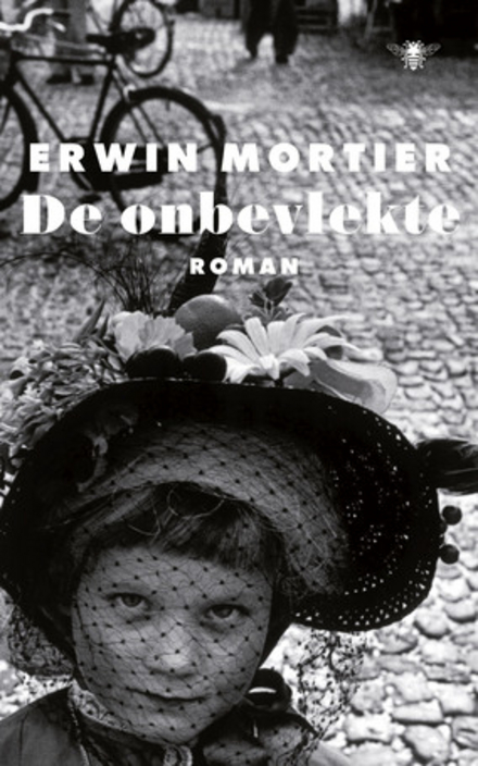 De onbevlekte : roman - Een debuut overdoen
