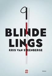 Blindelings : roman