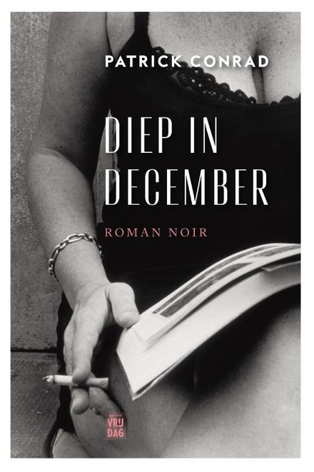 Diep in december : roman noir