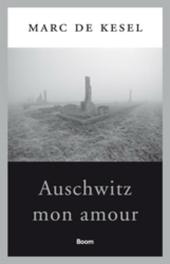 Auschwitz mon amour : over Shoah, fictie en liefde