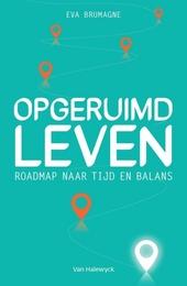 Opgeruimd leven : roadmap naar tijd en balans