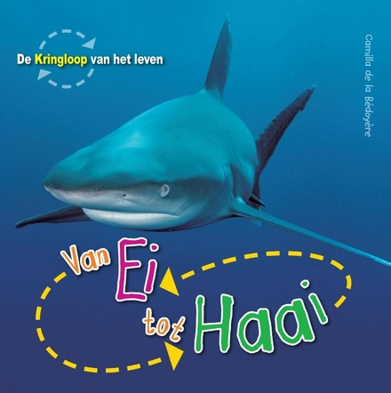 Van ei tot haai