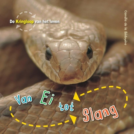 Van ei tot slang