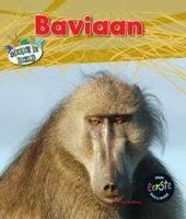 Baviaan