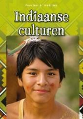Indiaanse culturen