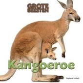 Kangoeroe