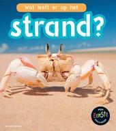 Wat leeft er op het strand?