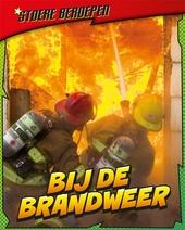 Bij de brandweer : vuur bestrijden