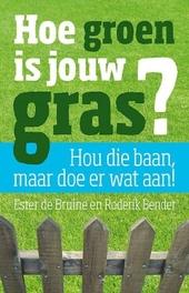 Hoe groen is jouw gras? : als je (soms) baalt van je baan