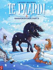 Doorgewinterde pony's