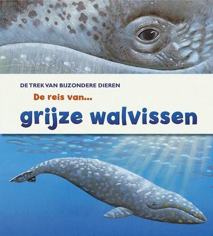 De reis van grijze walvissen