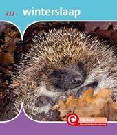 Winterslaap