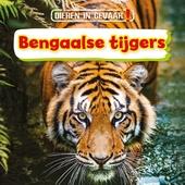 Bengaalse tijgers