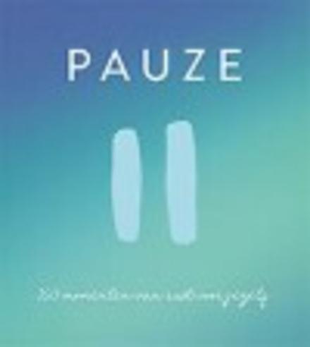Pauze : 100 momenten van rust voor jezelf