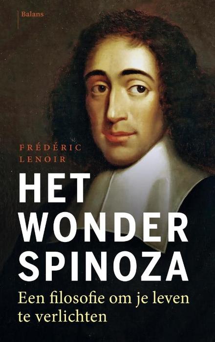 Spinoza en de weg naar het geluk : een filosofie van de eenvoud