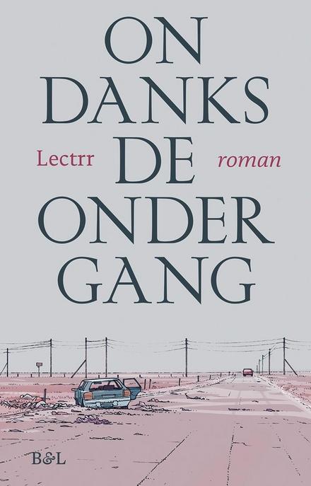 Ondanks de ondergang : roman