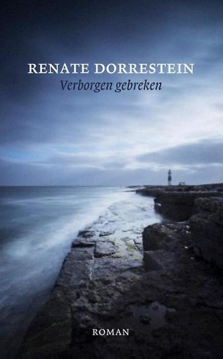 Verborgen gebreken : roman