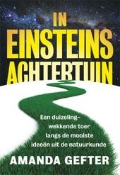 In Einsteins achtertuin : een duizelingwekkende toer langs de mooiste ideeën uit de natuurkunde