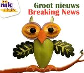 Groot nieuws [Nederlands-Engelse versie]