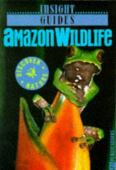 Amazon wildlife