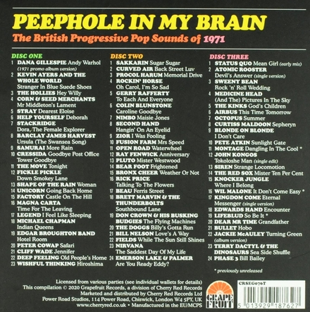 Peephole in my brain : the British progressive pop sounds of 1971