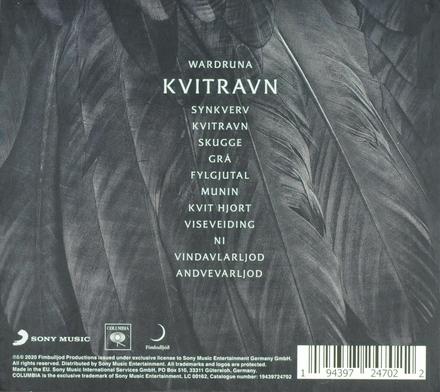 Kvitravn