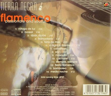 Flamenco : passionate and soulful