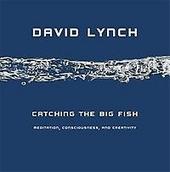 Catching the big fish : meditation, consciousness, and creativity