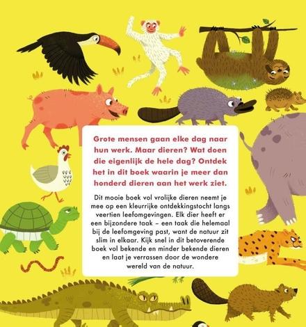 Wat dieren de hele dag doen