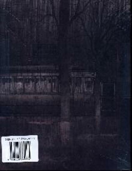 Het dwaallicht : een beeldroman